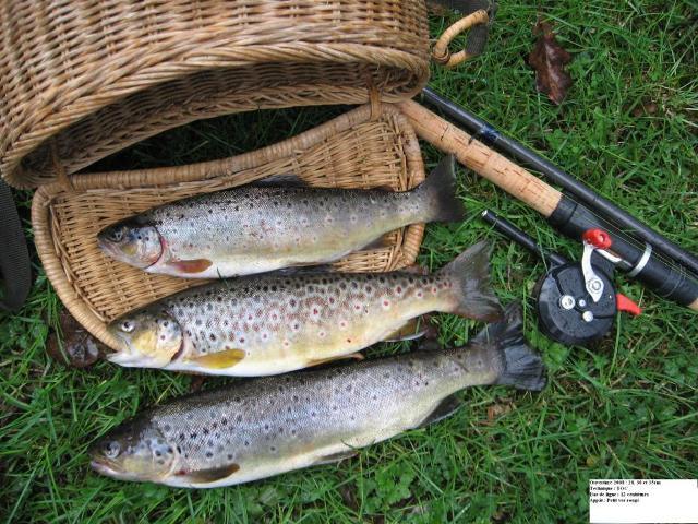La pêche à astrakhani en été 2017